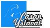 Casan Ystävät ry. Logo